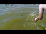 Купание змеи на Азовском море город Таганрог 14.07.2016 год.