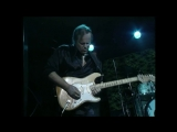 Walter Trout - The Reason Im Gone