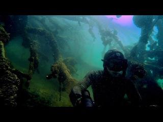 Трофейная подводная охота. Огромные капры, амуры.. Spearfishing carp