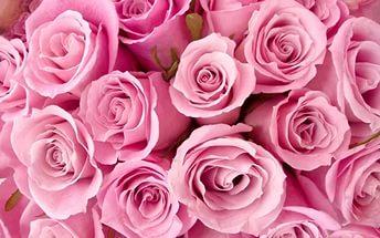 Çiçeklerin Güzel Kokması İçin