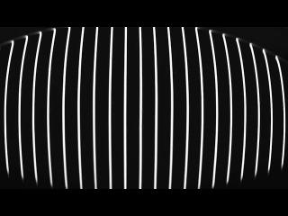 Carsten Nicolai - reflektor distortion