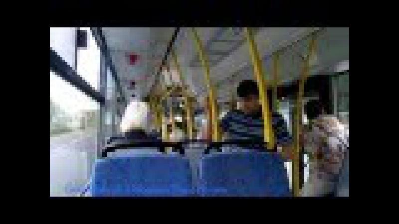 Автобус 250 (МАЗ 203.069)