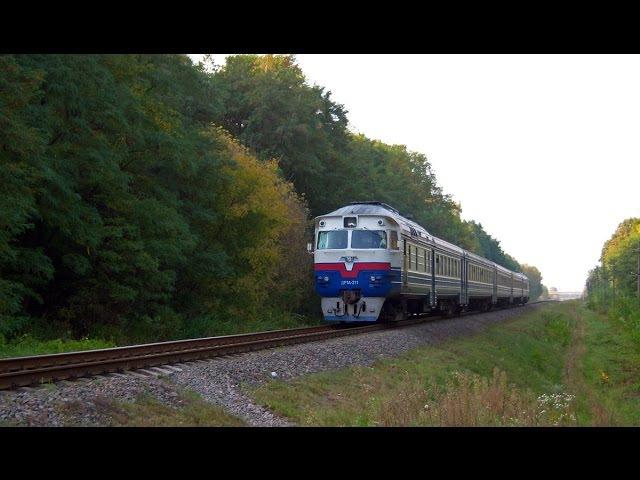 «Осенние краски» | ДР1А-211 | № 6894 Горностаевка - Чернигов