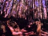 Kranked 1 Live To Ride 1998 DVDRiP (mtb full movie)