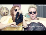 Русские Субтитры THE BIRDS AND THE BEES (ft. Mamrie Hart) Tyler Oakley