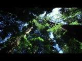 Radiohead - Reckoner (Henry Saiz Vocal Mantra Remix)