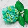 Цветы из фоамирана мастер-классы. ФлоМастер