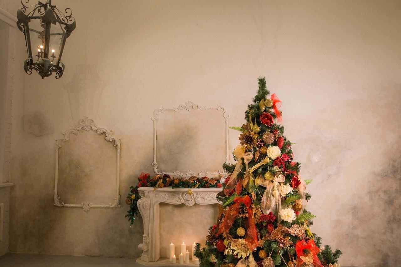 продаже новогодние декорации в фотостудии спб нам