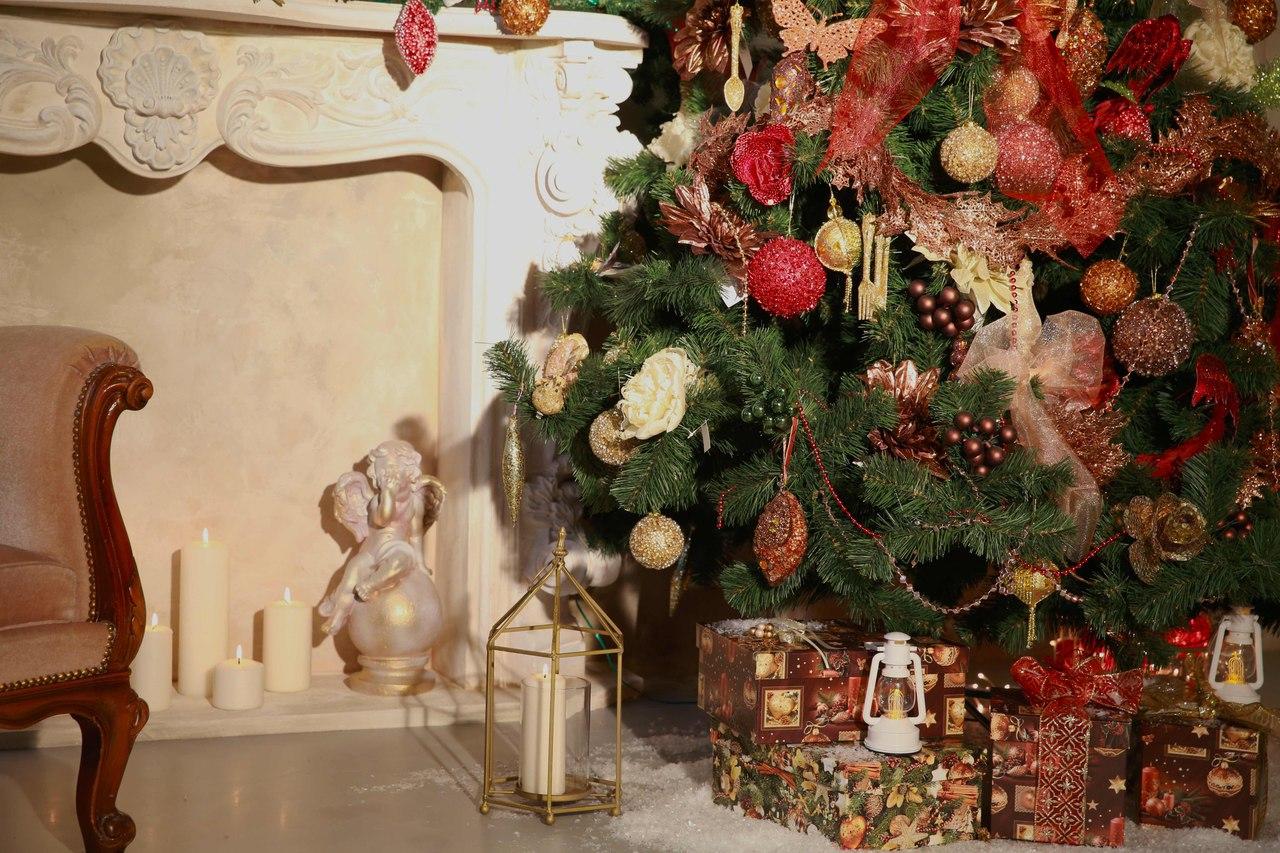 фотостудии с новогодними декорациями ладожская лучшая