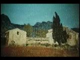смотреть фильм интимный дневник дровосека-эв3