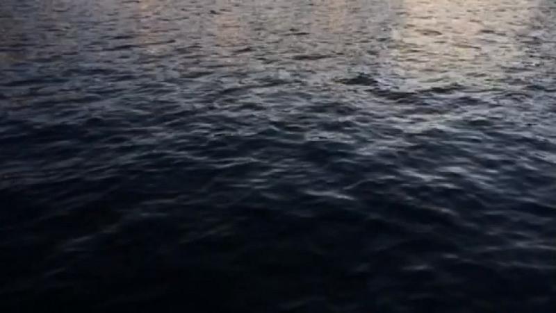 Video_Budaev_1