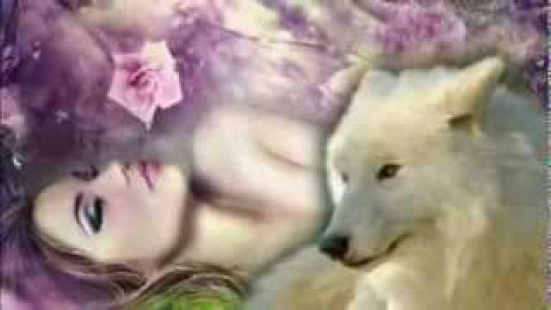 Одинокая волчица ☆Louve en solitude☆ de Mila*VV*