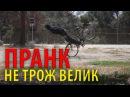 ПРАНК(twinzTV) - Не воруй чужой велосипед (Озвучка)