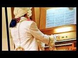 A Little Night Music - Wolfgang Amadeus Mozart В.А.Моцарт Маленькая ночная серенада