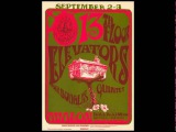 13th Floor Elevators   Fire Engine Live at The Avalon Ballroom, San Fran 1966