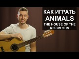 Как играть The Animals - House of the rising sun на гитаре Разбор, видео урок