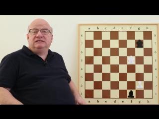 Гей-парад в Киеве и на шахматной доске