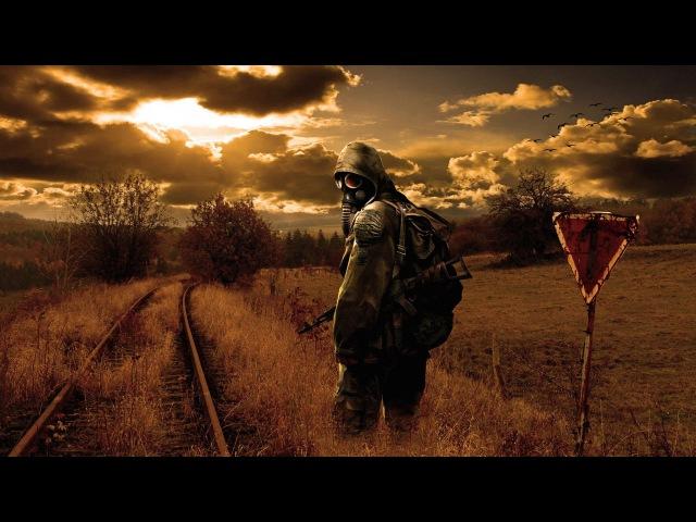 Прохождение мода ЗО2/ 14/ Тайник в Баре, список Дока - части мутантов, арты, лилии и опасная охота