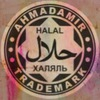 ahmadamir