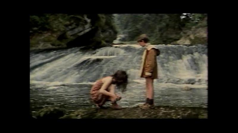 D43 Le sang du renard (1996) Francie (No kids porn!)