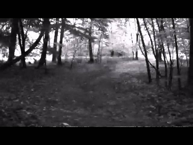 Geno Cultshit - Run Along (NEW SINGLE 2015)