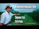 Агролесоводство Эрнста Гётча