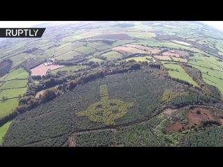 В Ирландском лесу обнаружили гигантский кельтский крест из крон деревьев