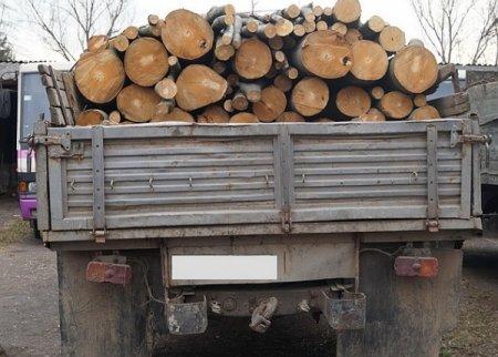 В станице Зеленчукской полицейские задержали грузовик с лесом
