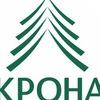 КРОНА- Институт комплексного развития и обучения