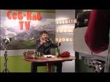 Наша Russia: Жорик Вартанов - Красная Шапочка (продолжение)