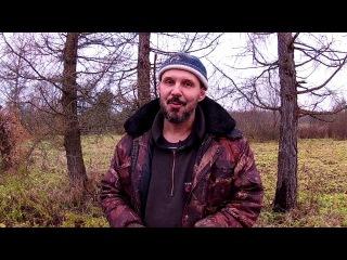 Про бесплатный лес Из города в деревню