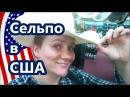 СЕЛЬПО в США магазин для фермеров, охотников и ковбоев. Valentina Ok. LifeinUSA. жизнь в США.