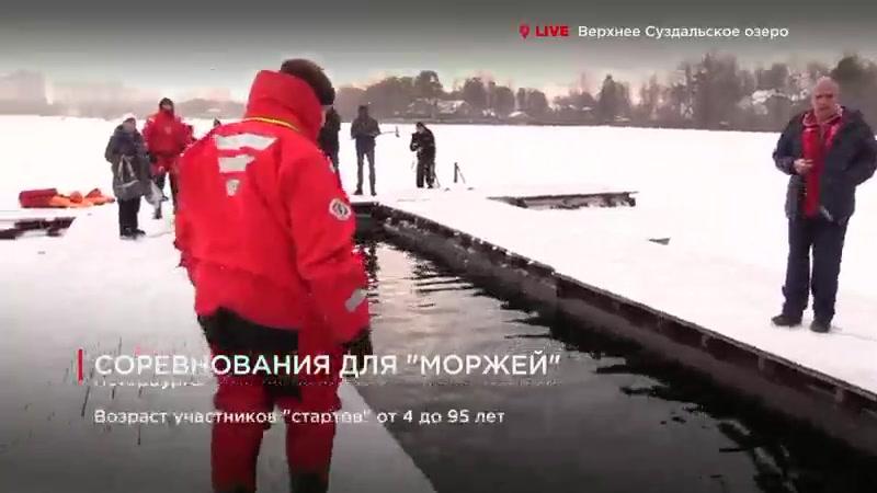 Телеканал Лайф78. Тамара Ивановна плывет!