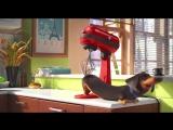 Тайная жизнь домашних животных-такса