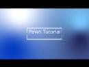 Introvideo pwn 2