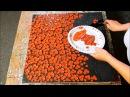 Cherry Blossom Tree. Textured Painting. Tutorial. Speed Demo. Acrylbild Baum by ilonka