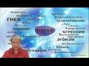 Как управлять гормонами радости / О.Бутакова