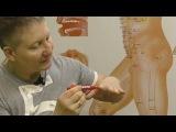Секреты китайской медицины (3). Инь и Ян руки. Меридианы: Легких (Р), Перикарада(МС),...