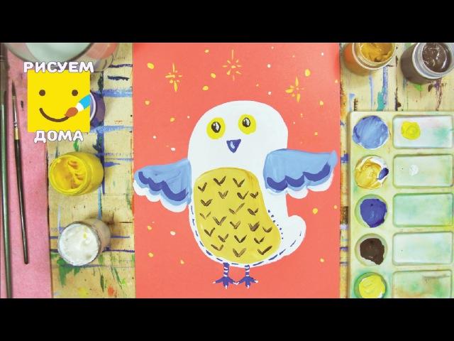 Как нарисовать белую сову - урок рисования для детей от 4 лет, гуашь, рисуем дома поэтапно