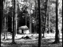 Brüderchen und Schwesterchen 1953 BRD Ganzer Film