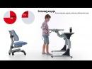 Парта Harvard Comf-Pro KD-333 и кресло | Купить в РФ