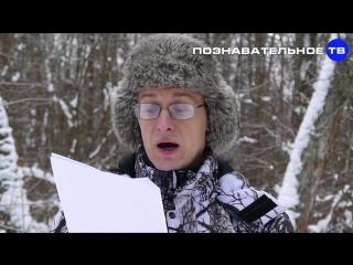 Rozhdestvo_Hrista-Solnca._Kogda_prihodit_Novyy_god_Poznavatel_noe_TV_Artyom_Voytenkov_