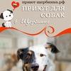 Собаки,Которые Любят(Приют для собак в Щербинке)