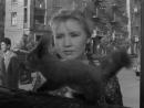1963 Приходите завтра Ташков Евгений 1927 2012