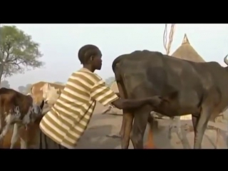 Strange rituals of African tribes