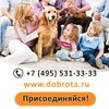 Магазин медицинской техники Доброта.ру