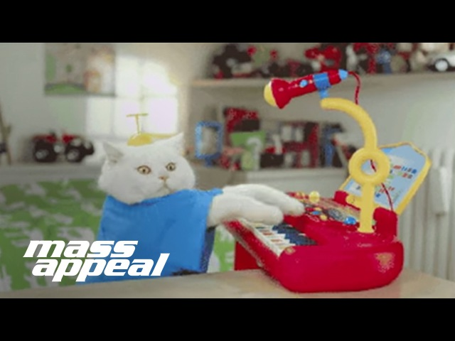 Run the Jewels All Meow Life Nick Hook Remix Official Video