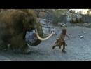 Жил был человек разумный / Il etait une fois...Homo Sapiens - 05. Охотники на мамонтов (2004)