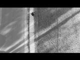 Lauriana Mae x Raekwon - Protect Ya Neck (Remix)