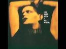 Lou Reed - Rock n Roll Animal (Full Album) 1974